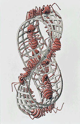 LW441-MC-Escher-Moebius-Strip-II-1963