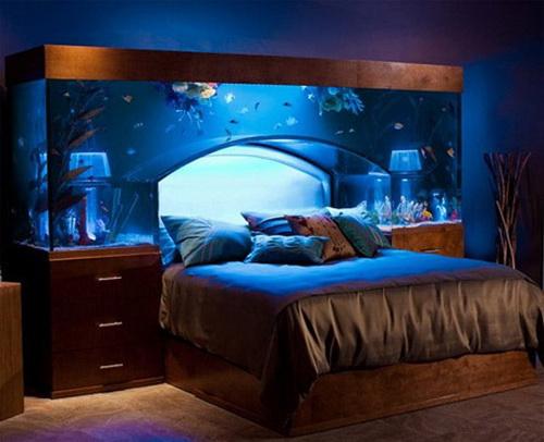 Unique-Aquariums-19