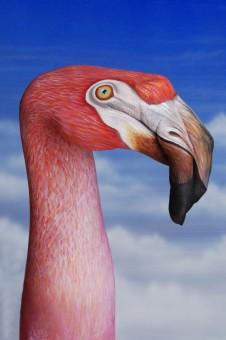 Flamingo1-226x340