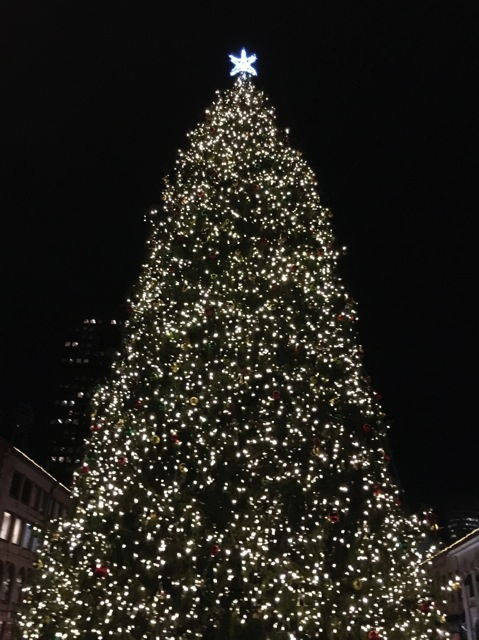 Lit tree with star