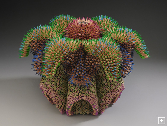 2011_maestre_cycad_front