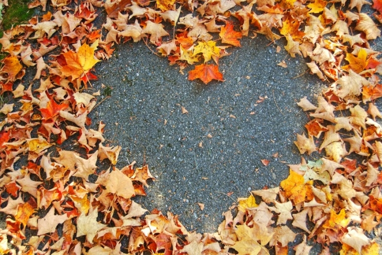 41524-autumn-leaf-heart