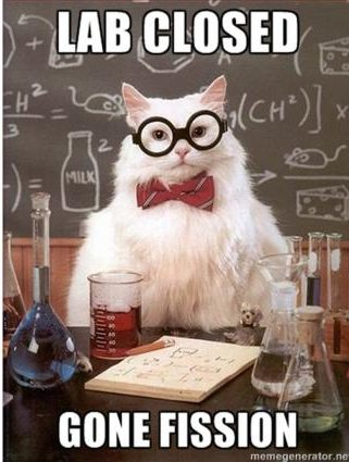 chemcat_gonefission