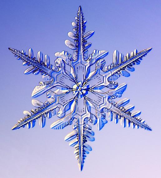 snowflake-8
